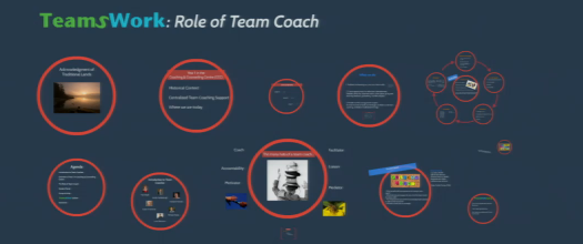 Role of the Team Coach at RRU