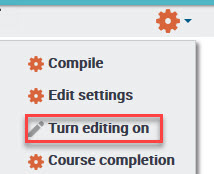 Turn Editing On