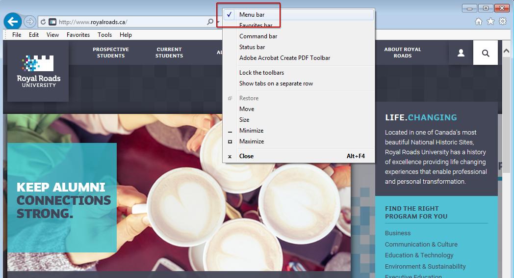 Webspace - WordPress not working in Internet Explorer (IE) - IT