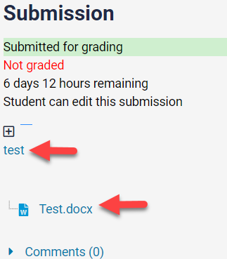 student submission