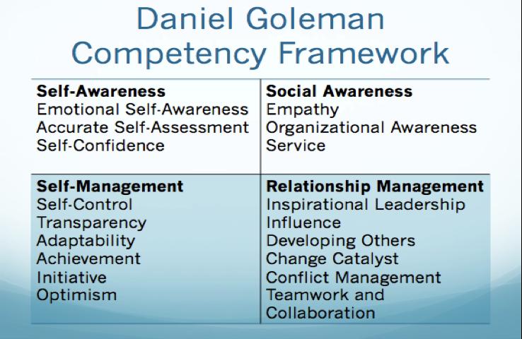 Daniel Goleman Competency Framework